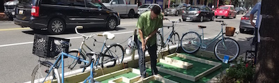 Urban Planning Students Build Pop-Up Park